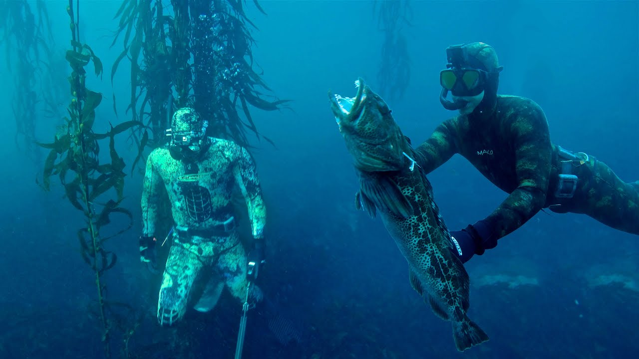 2020 Spearfishing Teamwork Pays Off.