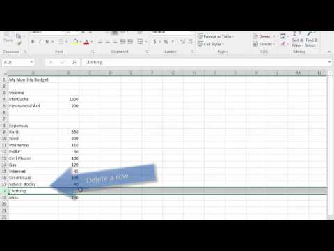 Microsoft Excel Basics: Making a basic budget Part 1 of 2