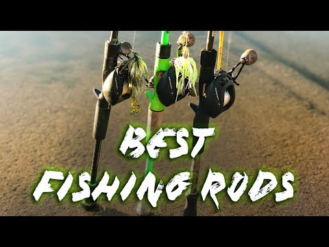 BEST 3 All Purpose FISHING RODS