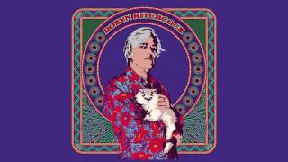 """Robyn Hitchcock - """"I Want To Tell You About What I Want"""" [Official Audio]"""