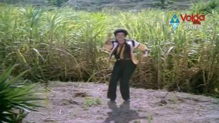 Seetarama Kalyanam Songs - Raallallo isukallo -  Balakrishna, Rajani