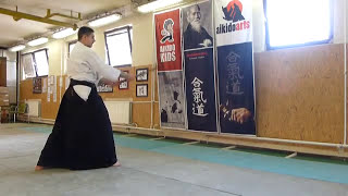 suburi (straight cut with sword) hanmi- [TUTORIAL] Aikido basic weapon technique 合気剣