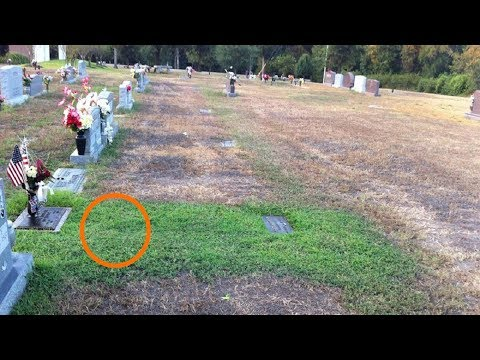Mom Didnt Understand Why Her Sons Grave Was Green She Cried When She Knew Truth Behind It