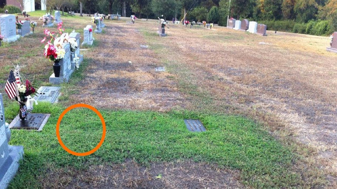 Mom Didn't Understand Why Her Son's Grave Was Green. She Cried When She Knew Truth Behind