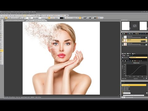 Photo Pos Pro V3 - Disintegration Effect