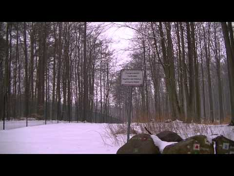 HAARP-Anlagen in Deutschland