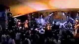 Molotov - Apocalypshit (Live in Rio)