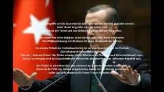 Türkei: Der Feldzug gegen die Terroristen der PKK und ISIS (Turkey: warfare contra PKK and ISIS)