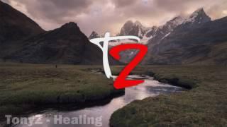 Tonyz Healing ORIGINAL MIX Alan Walker Style.mp3