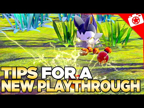 Early Game Tips For a New Play-through of New Pokemon Snap