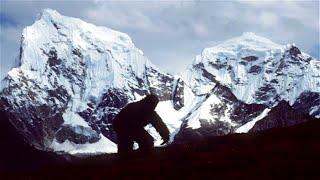 Everest'in Zirvesinde Ne Yaşıyor?