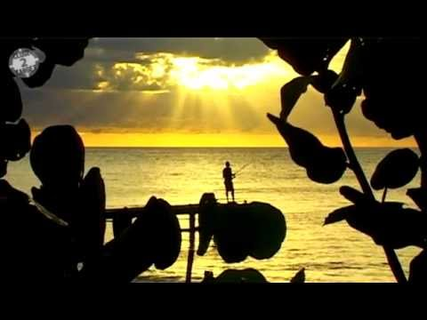 Travel guide about surfing in Guadeloupe - Gwada Stylez