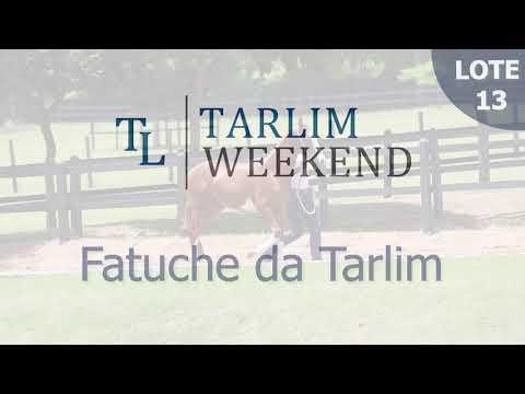 Lote 13 - Fatuche da Tarlim (Potros Tarlim)