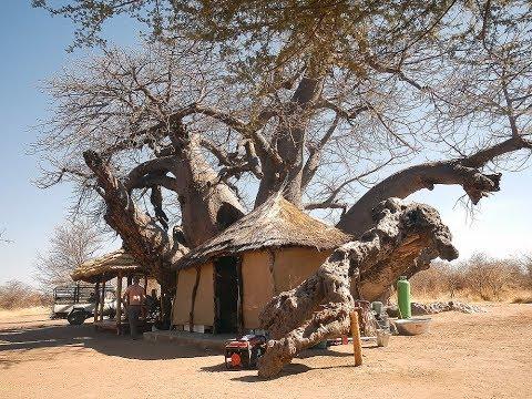 Tsumkwe  [North Eastern Namibia]