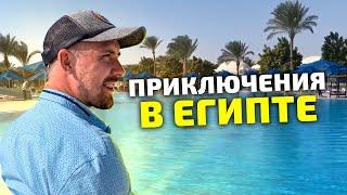Хургада 2020 сегодня отдых Египет 2020 Петанк Бочче обзор desert rose resort 4 день