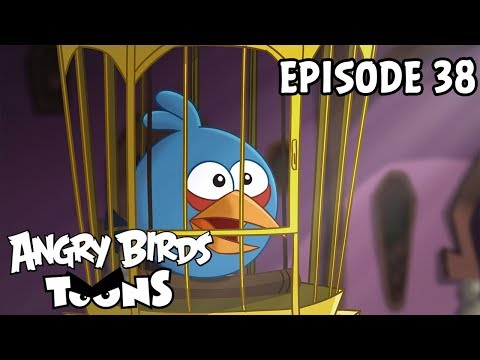 Angry Birds Toons | A Pig's Best Friend - S1 Ep38