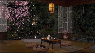 CHERRY BLOSSOM SPRING AMBIENCE : A Raining Evening in a Zen Garden with Fluttering Petals 🌸🌿 screenshot 5