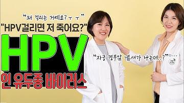 """냄새만 맡아도 """"자궁경부암""""인지 알아내는 산부인과전문의가 알려주는  """" HPV"""" 바이러스의 모든것!"""