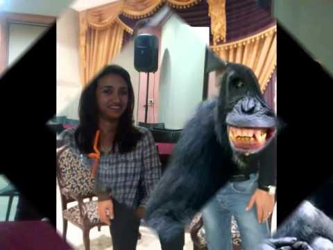 aladin cousin 3efcha