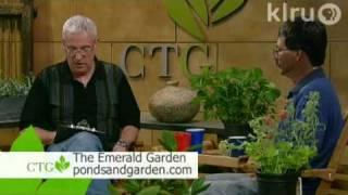 Central Texas Gardener: 5/01/10