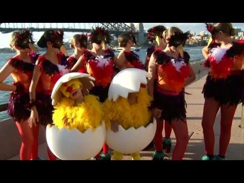 Chinesisches Neujahrsfest: Das Jahr Des Hahnes