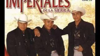"""Linda """" Trio Imperiales De La Sierra """""""