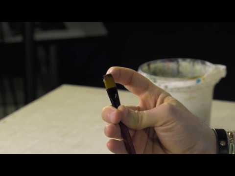 Ebony amateur clips