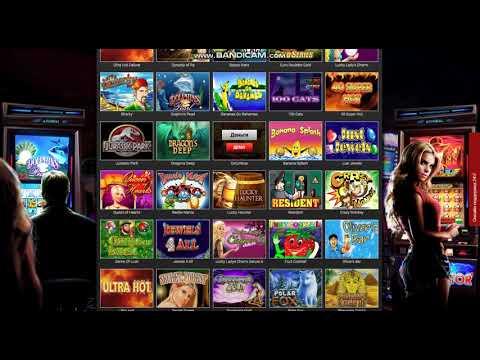 Pointloto - Обзор онлайн казино Поинт лото от OnlineCasinoMD