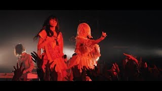 "ぜんぶ君のせいだ。""Cult Scream"" Official LIVE MOVIE"