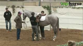 Top Horse Tv - David Quick From Isle Of Wight Farm