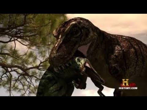 T. rex Vs Nanotyrannus!