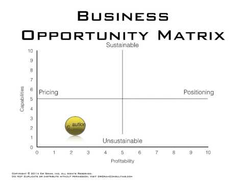 Evaluating Business Opportunities