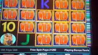 IGT- WILD WOLF slot machine BIG WIN!