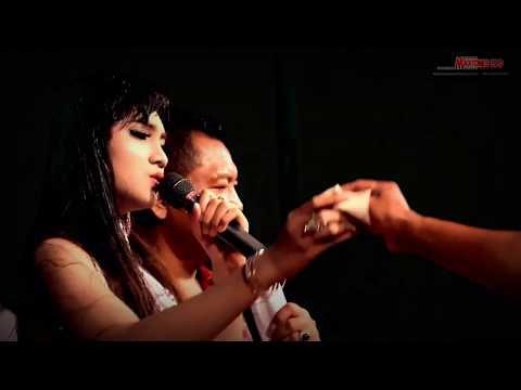 NEW PALLAPA - ILALANG [NICE SONG] JIHANAUDY