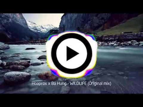Hoaprox x Bá Hưng – WILDLIFE (Original mix)