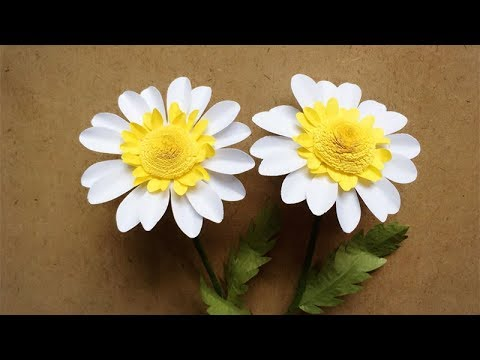 how to make daisy flower extract
