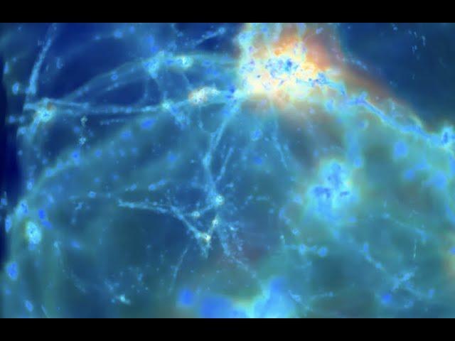 Plasma Universe, Time Traveler, Cosmic Rays | S0 News Oct.30.2020