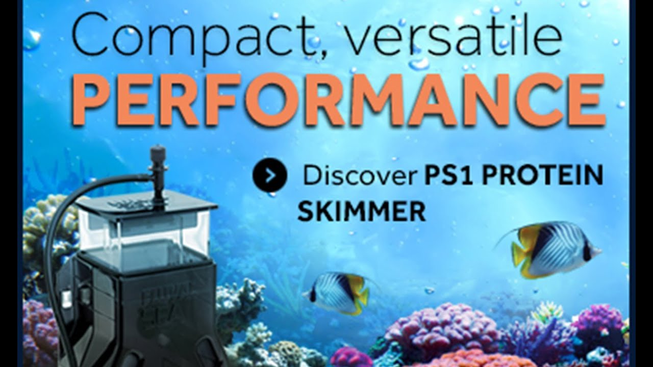 Fluval Sea PS1 Protein Skimmer for Saltwater Aquariums