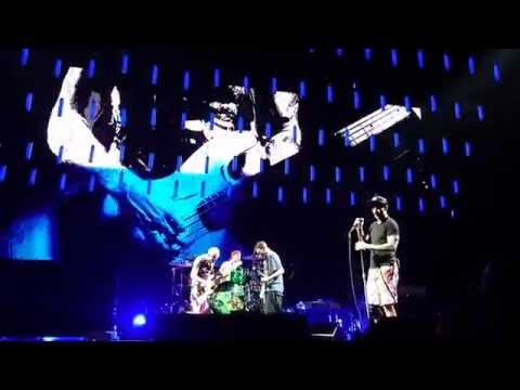 Under the Bridge - Red Hot Chili Peppers - Live in Paris 2016
