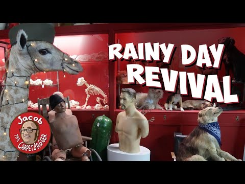 rainy-day-revival---incredible-and-bizzare-oddities