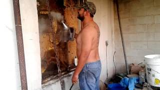 Honey Bee hive removal in Mercedes, Tx  by Luis Slayton of Bee Strong Honey and Bee Removal