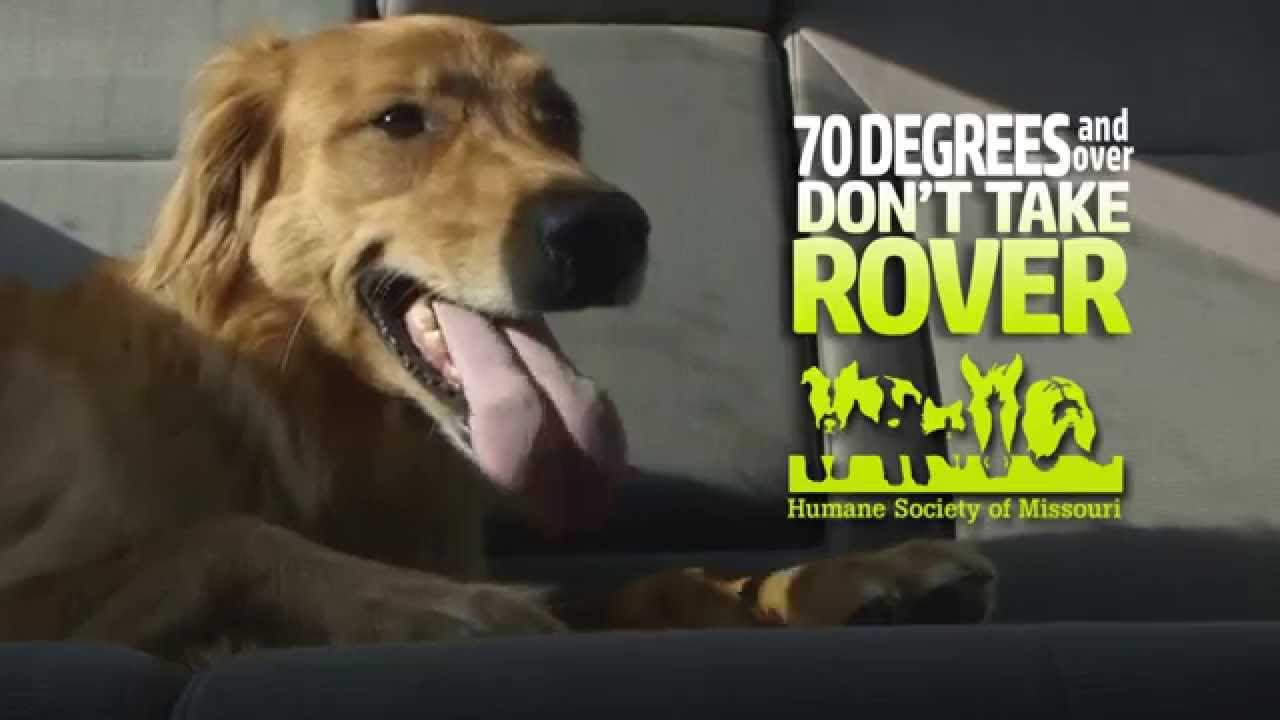 70 Degrees and Over - Don't Take Rover! - Humane Society of