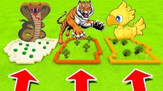 Minecraft PE : DO NOT CHOOSE THE WRONG FARM! (Ancient Cobra, Tiger, Chocobo)
