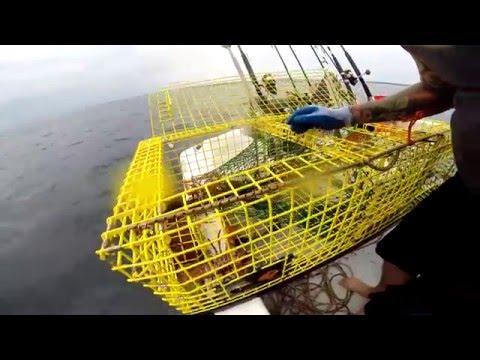 Lobster fishing in Massachusetts!