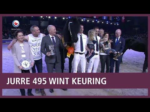 REPO: Jurre 495 is de winnaar van de hengstenkeuring