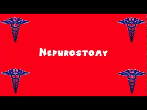 Pronounce Medical Words ― Nephrostomy