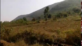CHINTAPALLI AGENCY AREA VALLEY - AMAZING JOURNEY