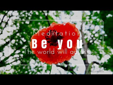 EP8 Morning Dew on Red Poppy Slow Motion - Help You Relax, Meditation, Sleep, Insomnia