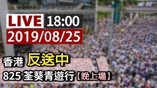 【完整公開】LIVE 香港反送中 825荃葵青遊行(晚上場)