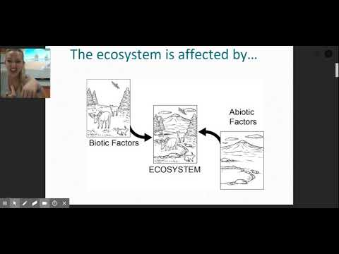 Ch. 2 Marine Ecosystem And Biodiversity Lecture 1 Of 2